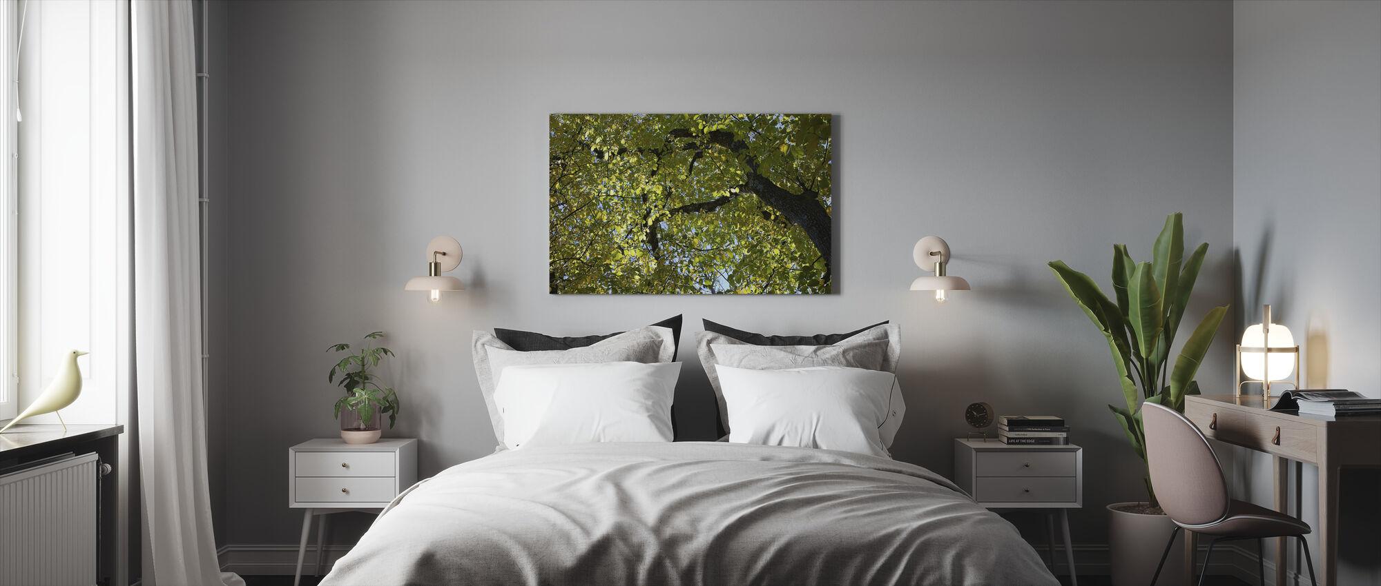 Tree Branches - Canvas print - Bedroom