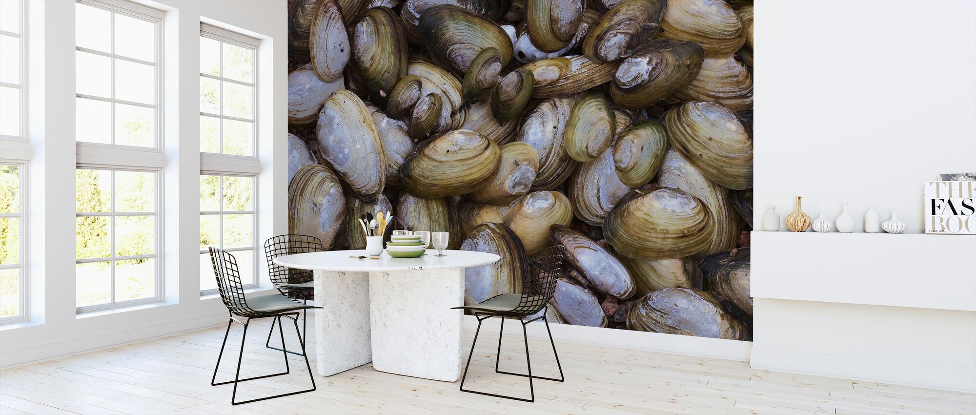 Mussel Shell - Wallpaper - Kitchen