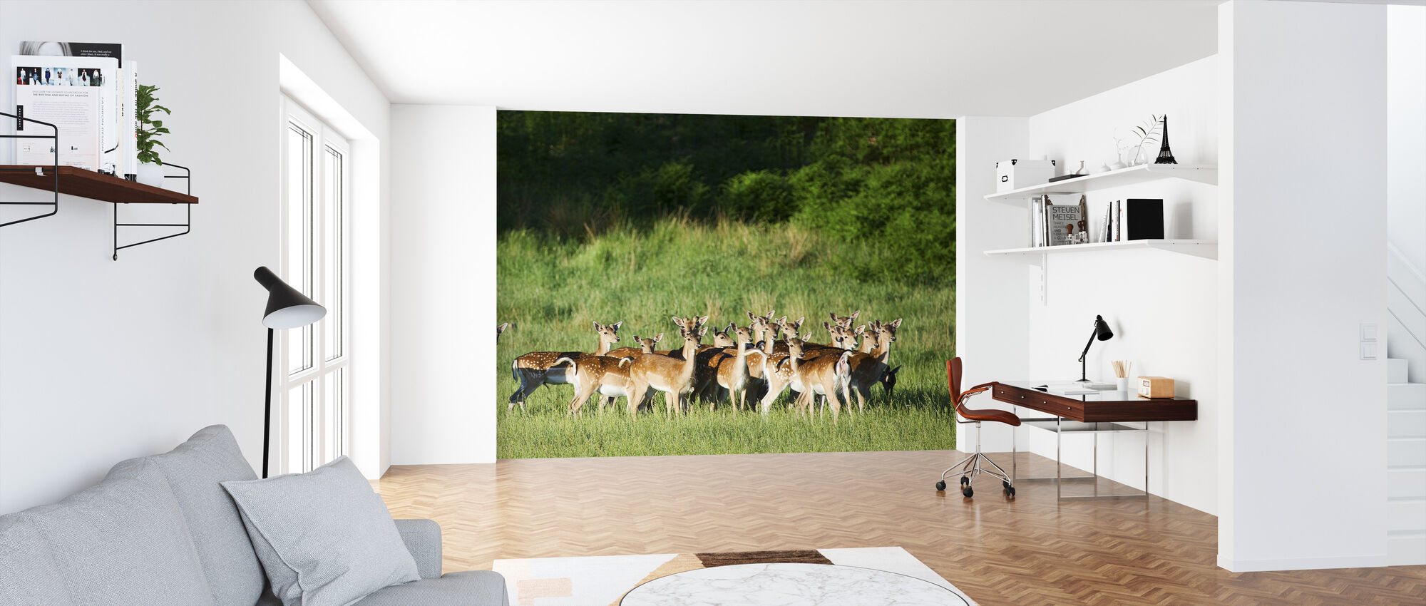 Fallow Deers - Wallpaper - Office