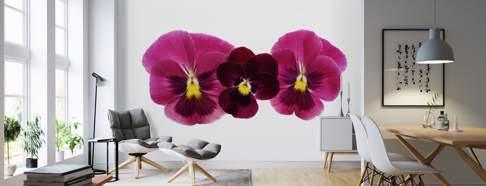 Pansies - Wallpaper - Living Room