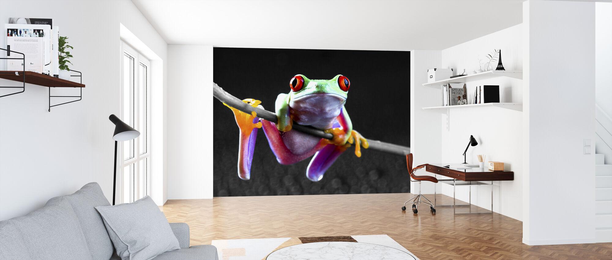 Red Frog - Colorsplash - Wallpaper - Office