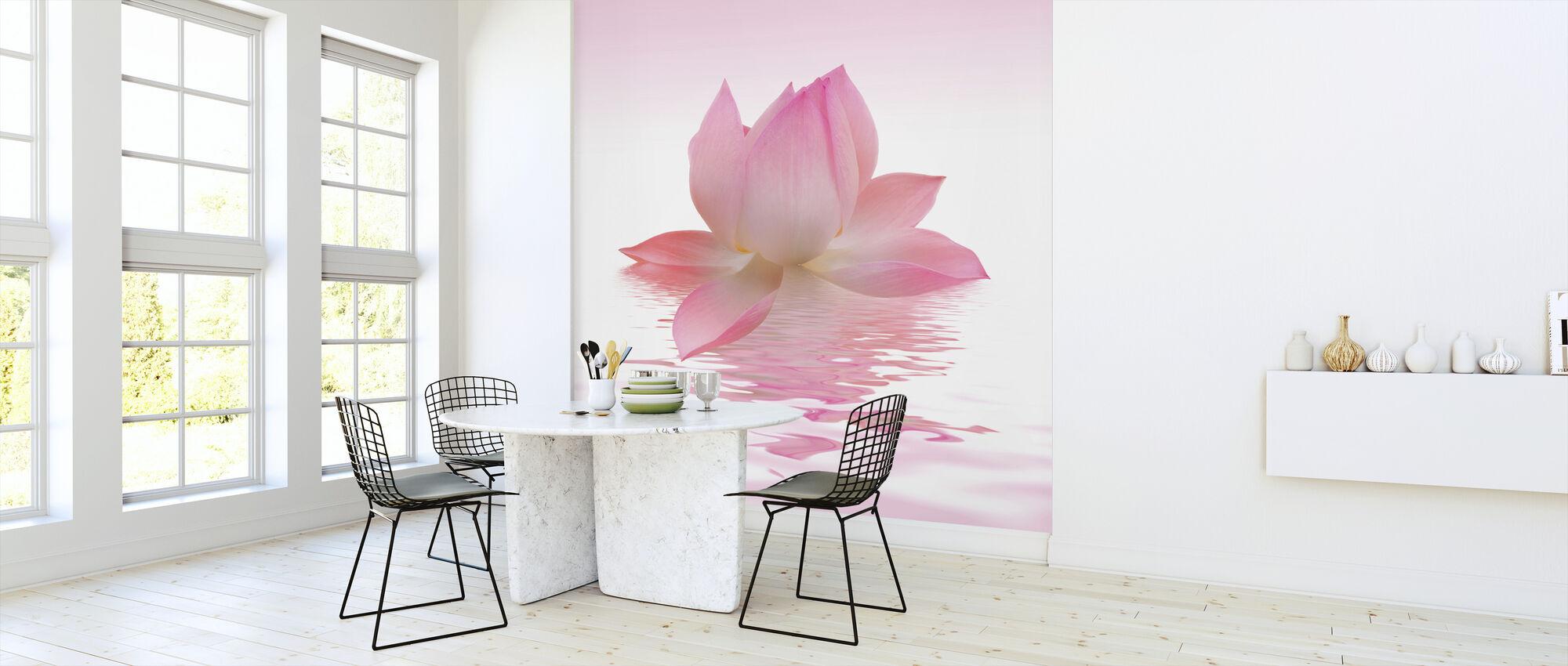 Pink Lotus - Wallpaper - Kitchen