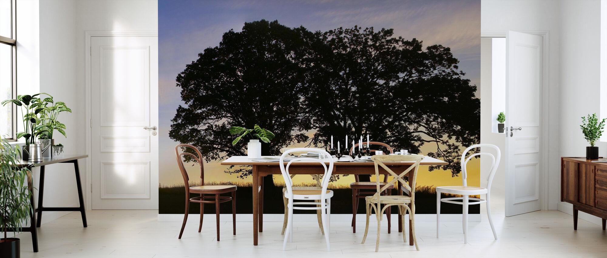 sunset trees mit fototapeten einrichten photowall. Black Bedroom Furniture Sets. Home Design Ideas