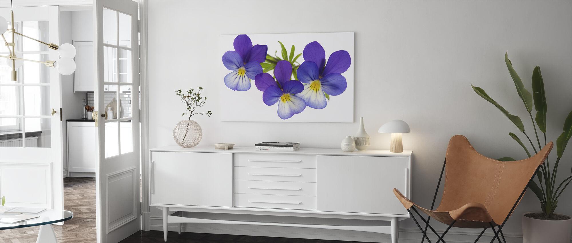 Purple Pansies - Canvas print - Living Room
