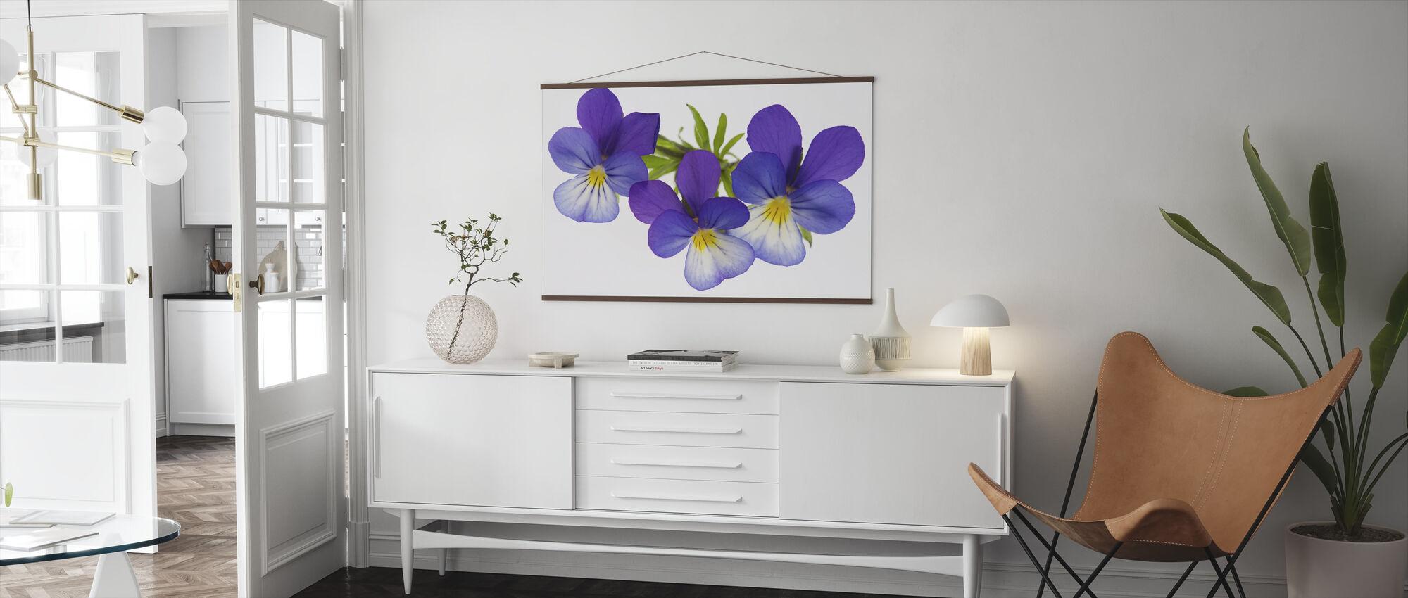 Purple Pansies - Poster - Living Room