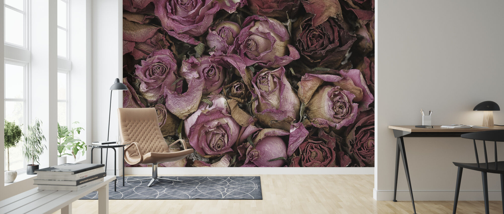 Dried Roses - Wallpaper - Living Room