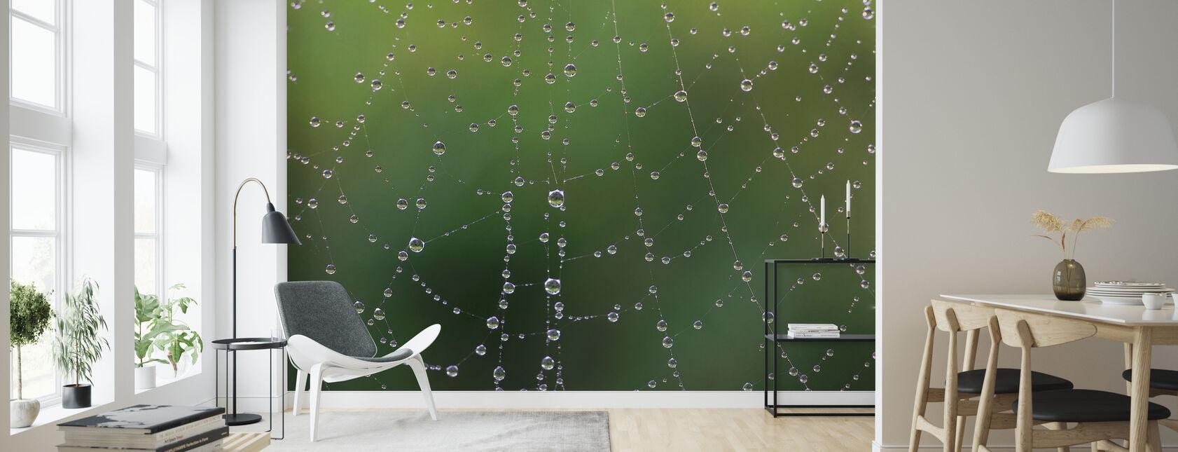 Dew Web - Wallpaper - Living Room