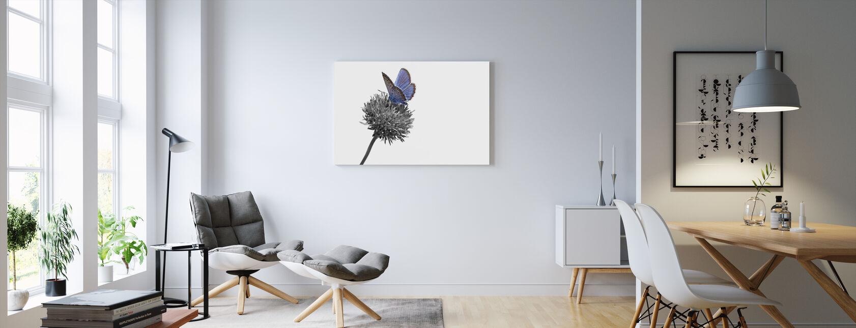 Julius Butterfly - Colorsplash - Canvas print - Living Room