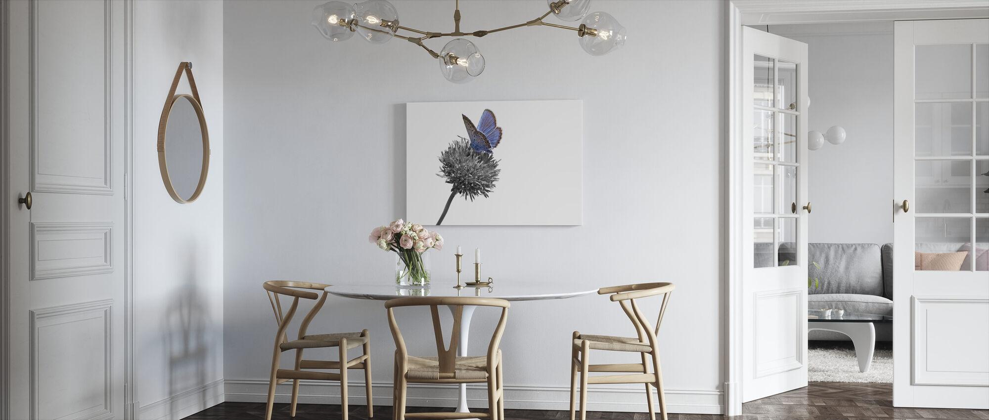 Julius Butterfly - Colorsplash - Canvas print - Kitchen