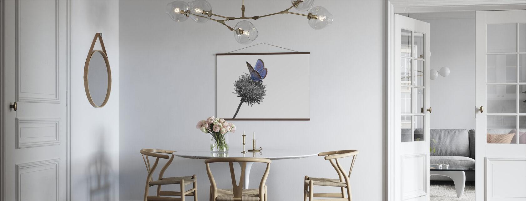 Julius Vlinder - Colorsplash - Poster - Keuken