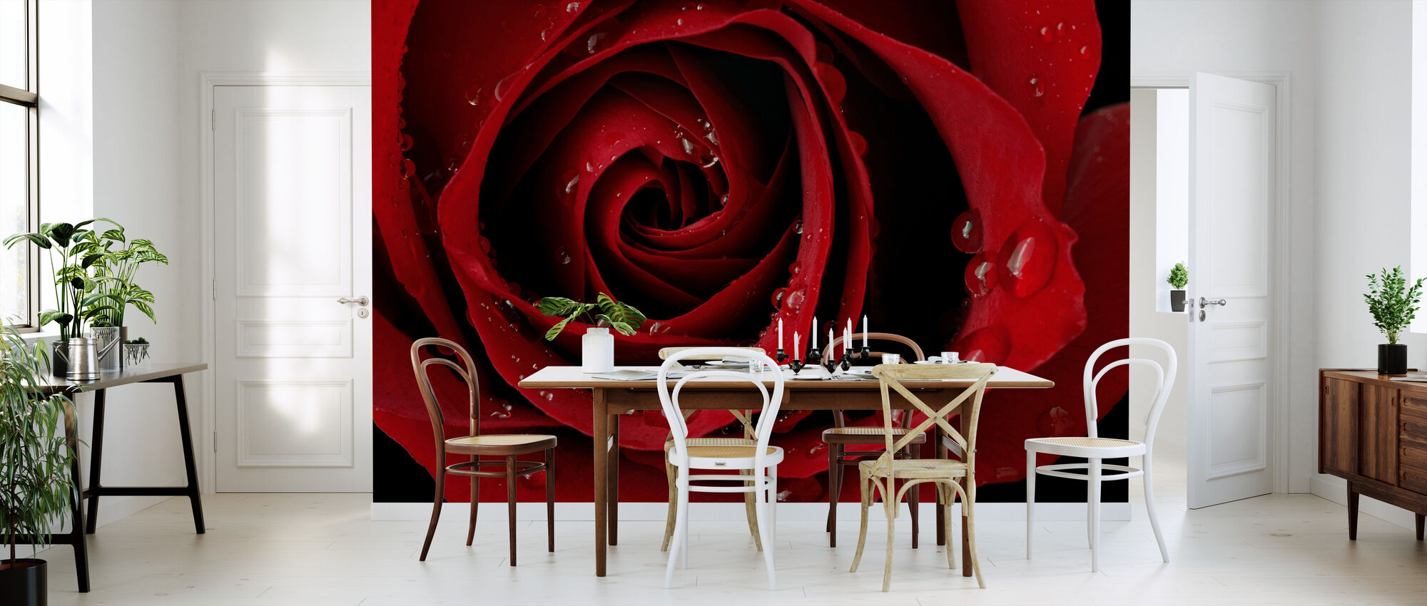Dark Red Rose - Wallpaper - Kitchen
