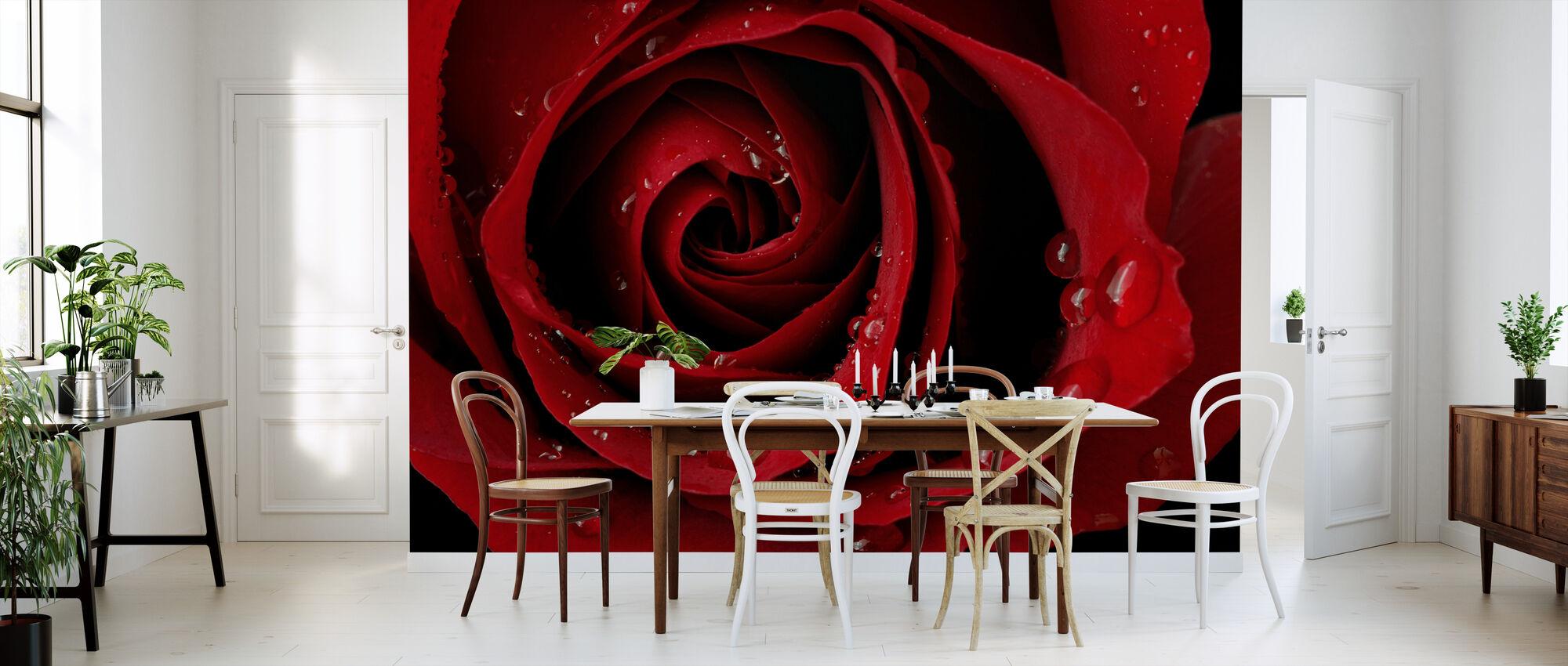Donker Rode Roos - Behang - Keuken