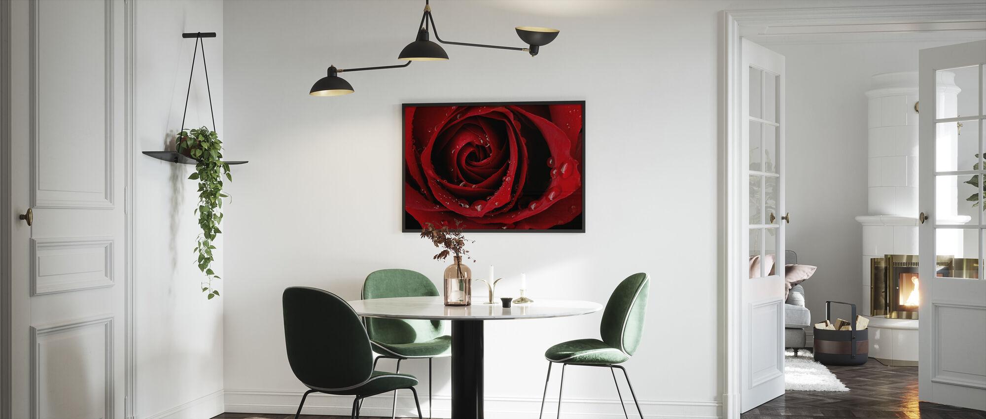 Mørk Rød Rose - Indrammet billede - Køkken
