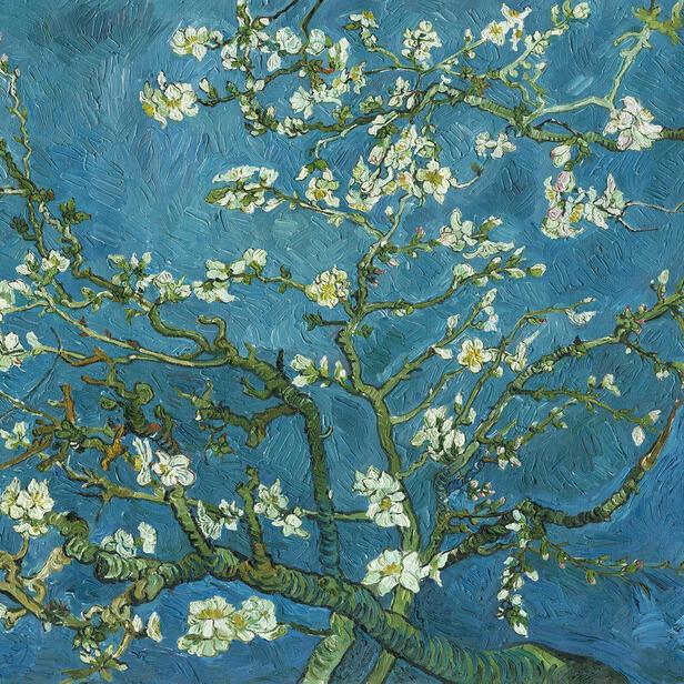 Van Gogh Wallpaper: Wall Murals, Photo Wallpapers & Canvas Prints