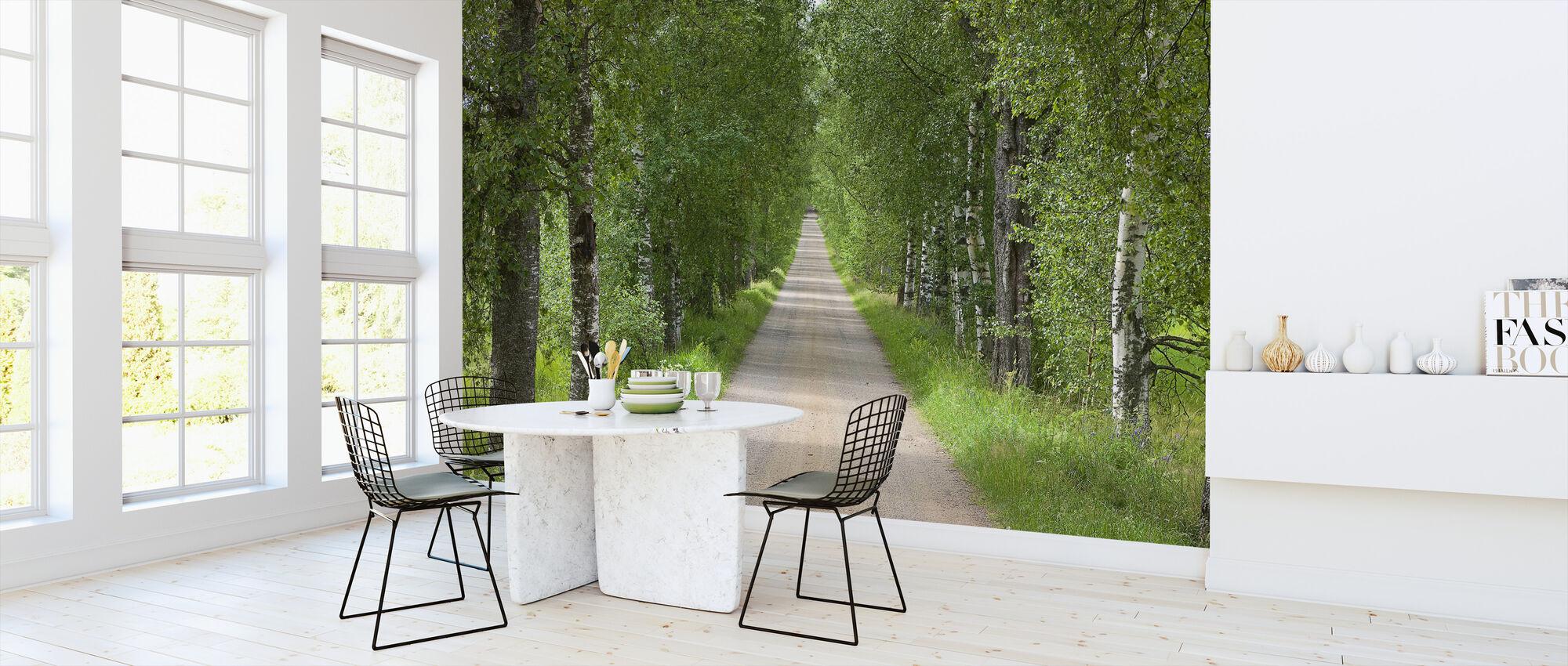 Birch Avenue in Summer - Wallpaper - Kitchen