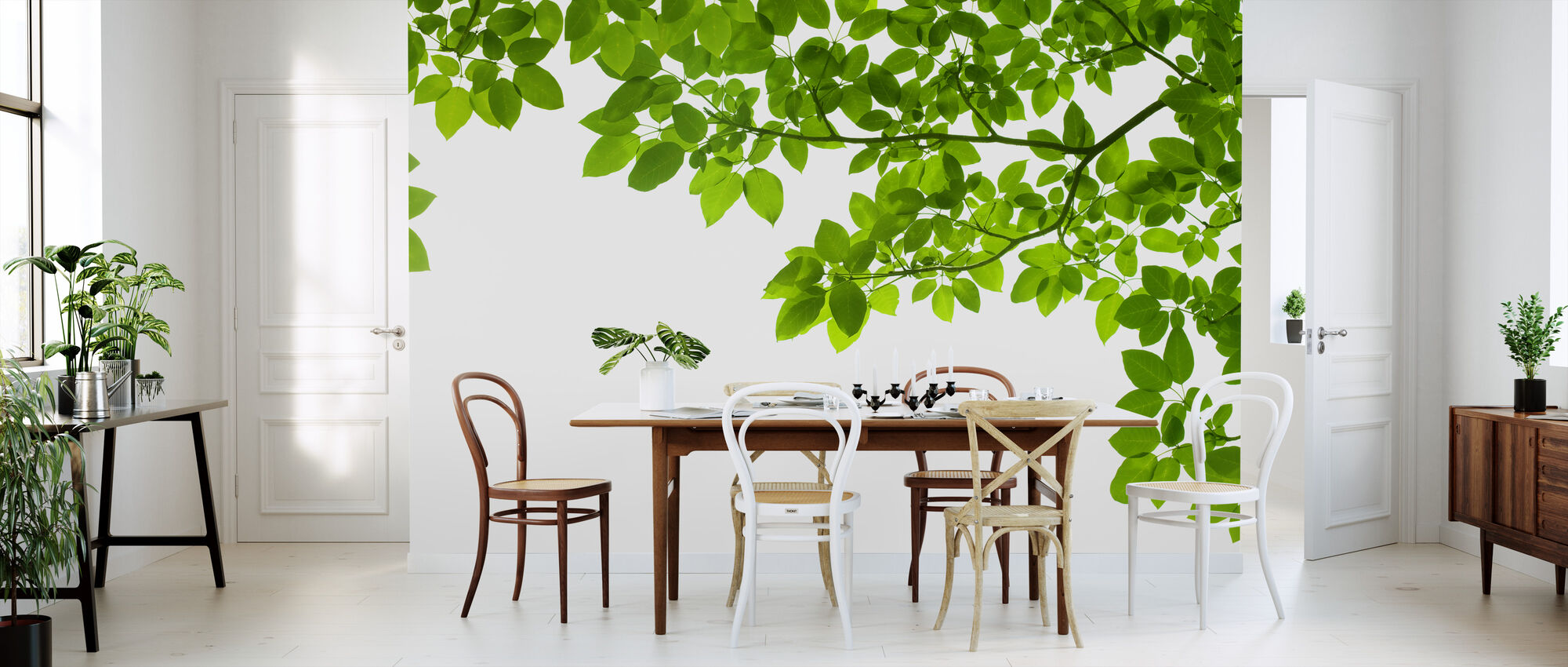 Frame of Leaves - Wallpaper - Kitchen