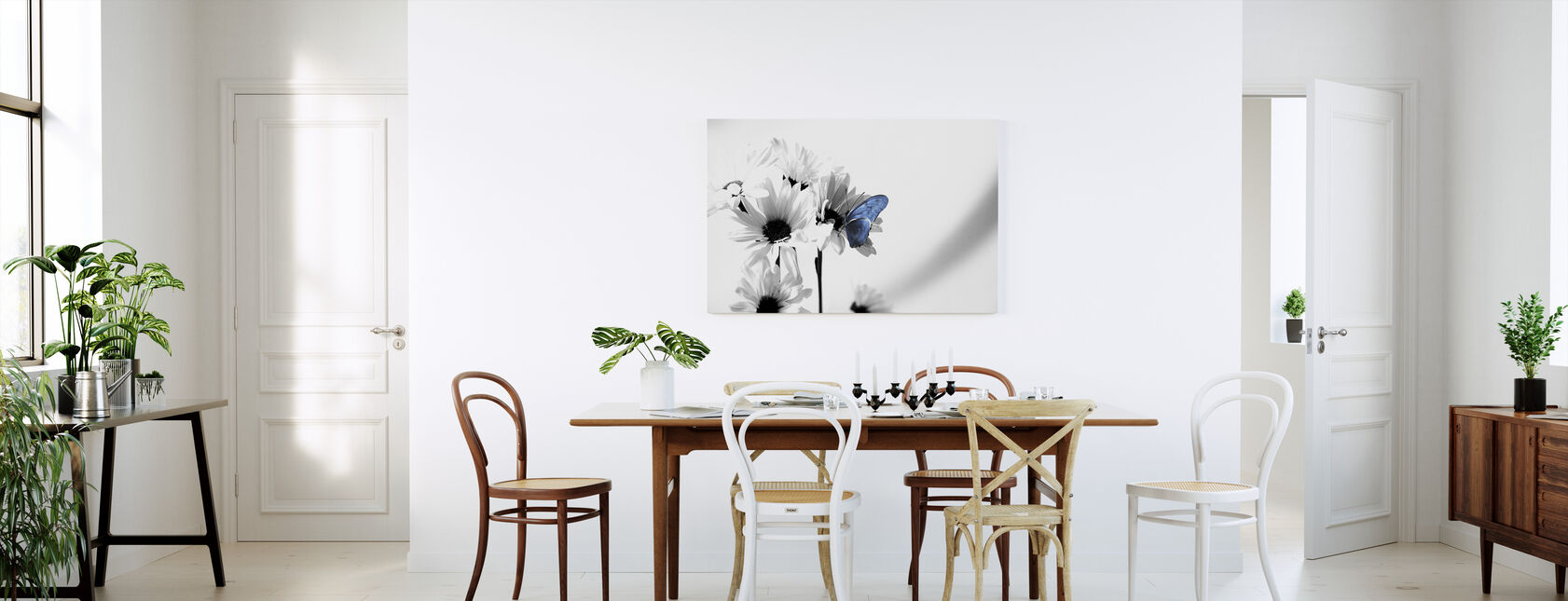 Julia Butterfly - Canvas print - Kitchen
