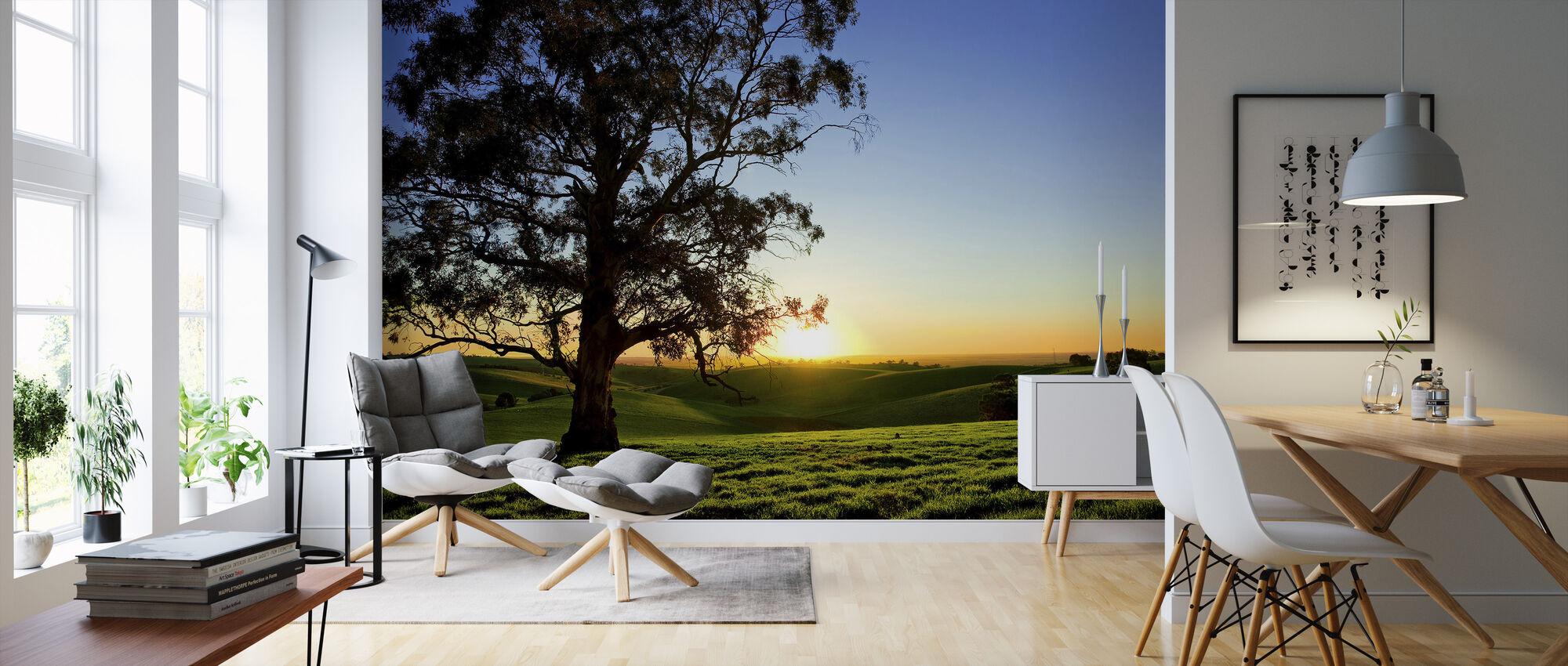 Kaunis auringonlasku maaseudun niitty - Tapetti - Olohuone
