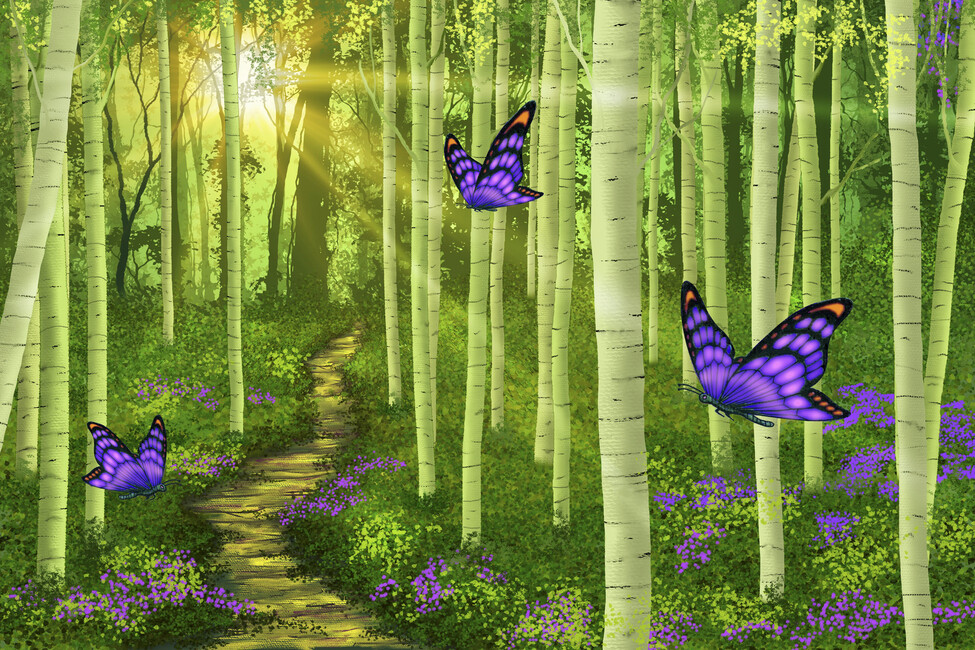 Fantasy forest wall mural photo wallpaper photowall for Fairy forest mural