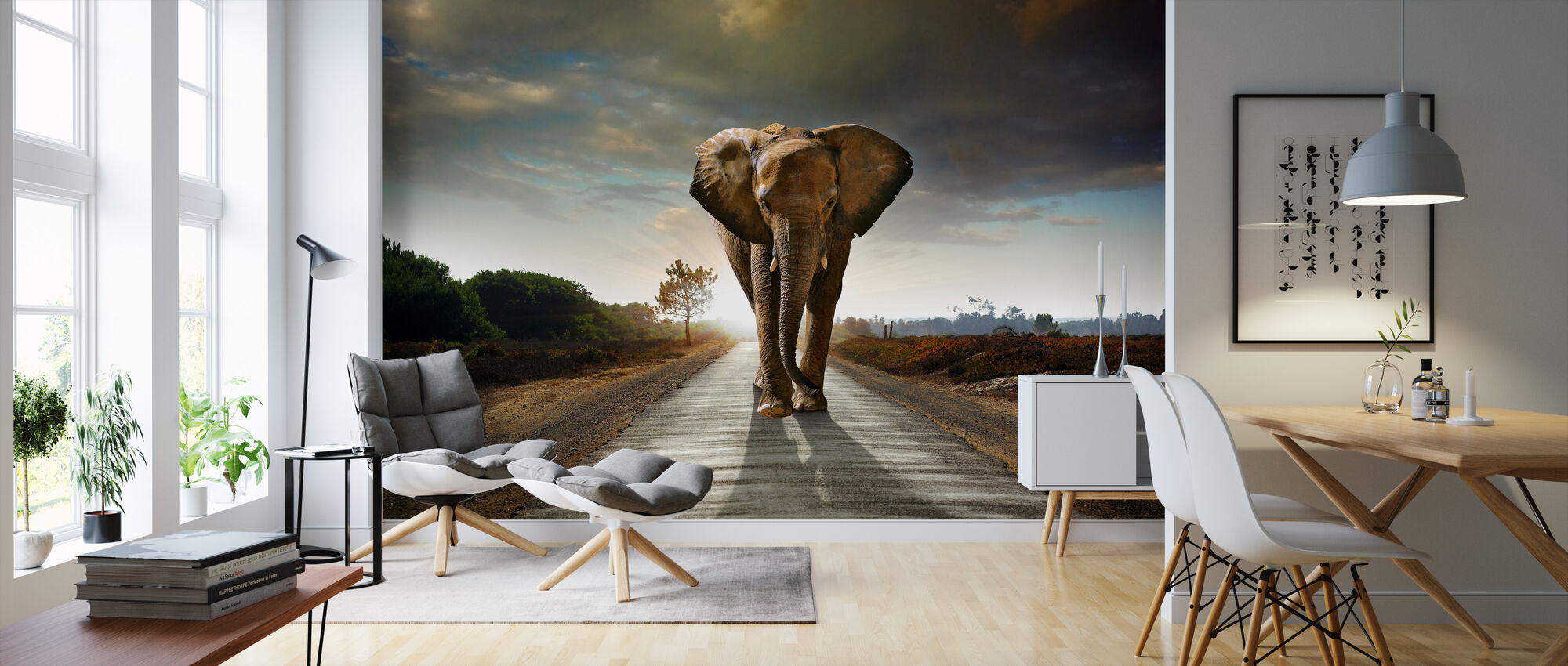 elephant road fototapete nach ma photowall. Black Bedroom Furniture Sets. Home Design Ideas