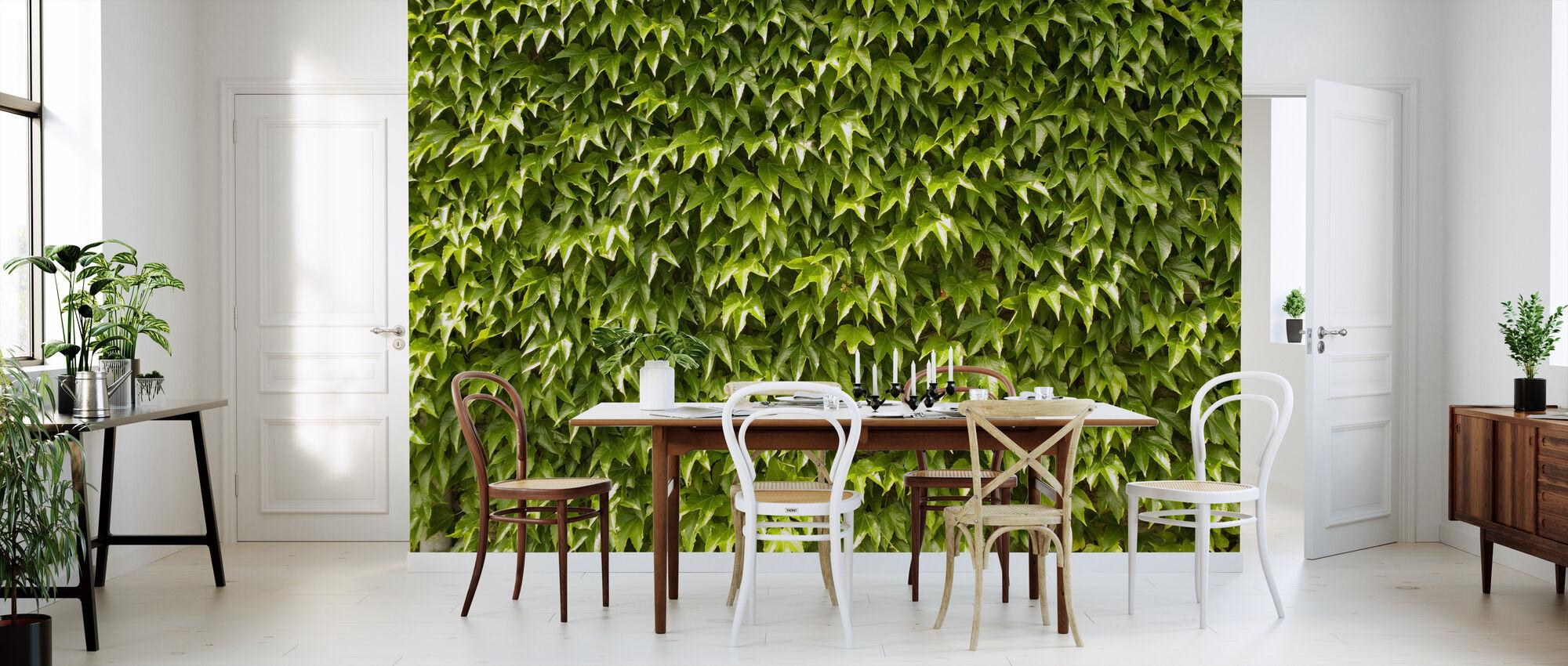 Vihreä seinä muratti lehdet - Tapetti - Keittiö