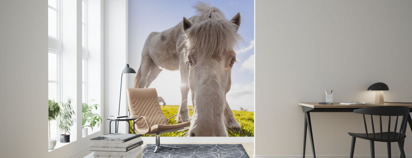 Hvid hest - Tapet - Stue