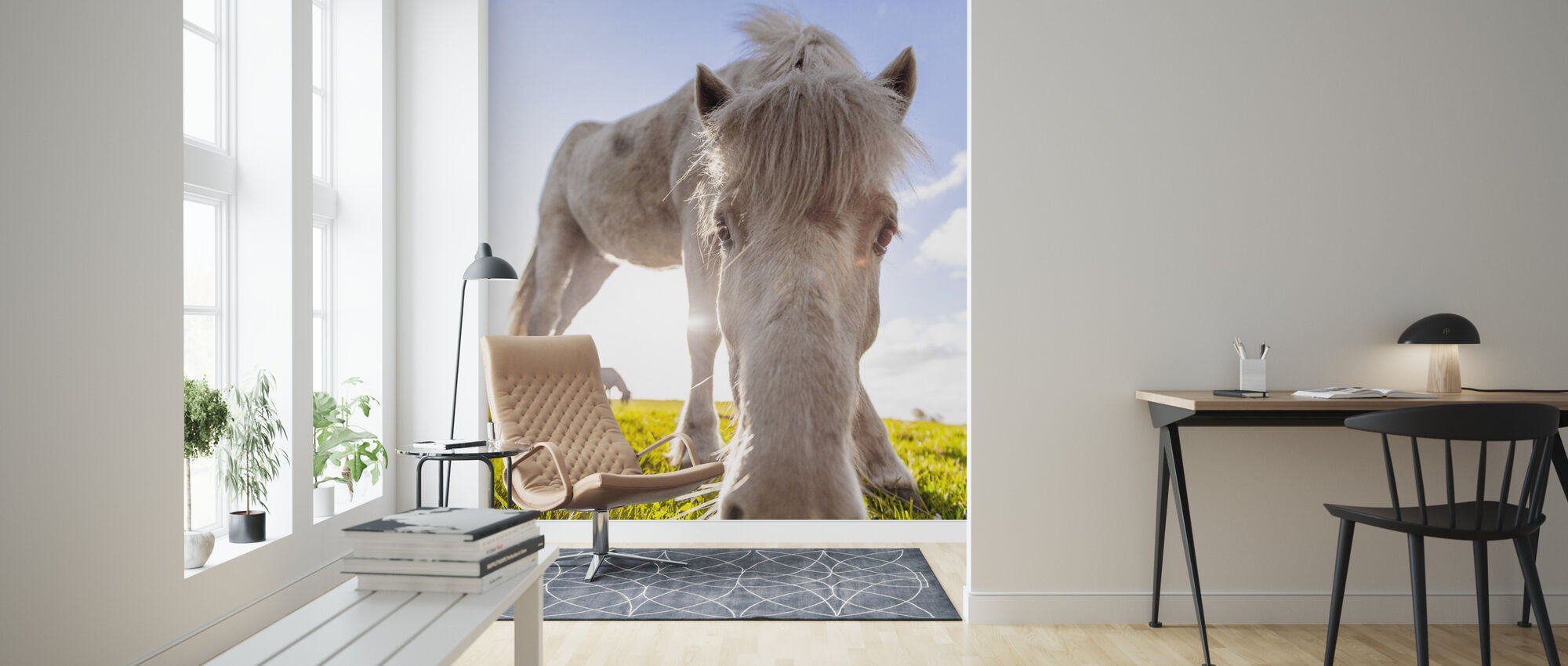 White Horse - Wallpaper - Living Room