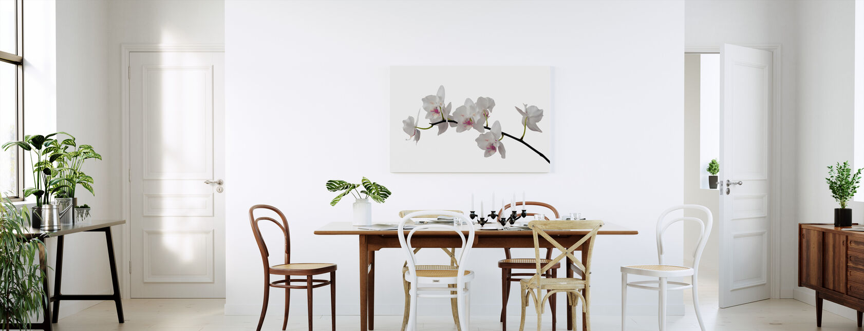 White Orchid Stem - Purple - Canvas print - Kitchen