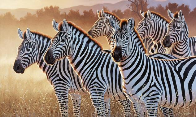 6db5c81cd285 Animals – large canvas prints – Photowall
