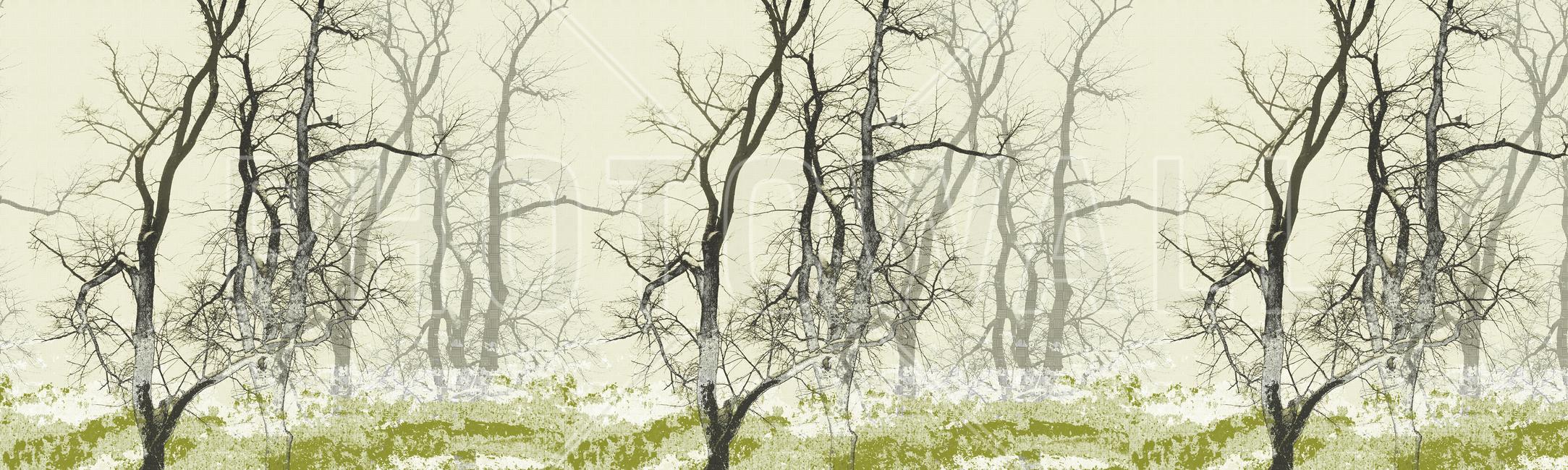 Kuva Wander Land Moss Tapetit / tapetti 100 x 100 cm