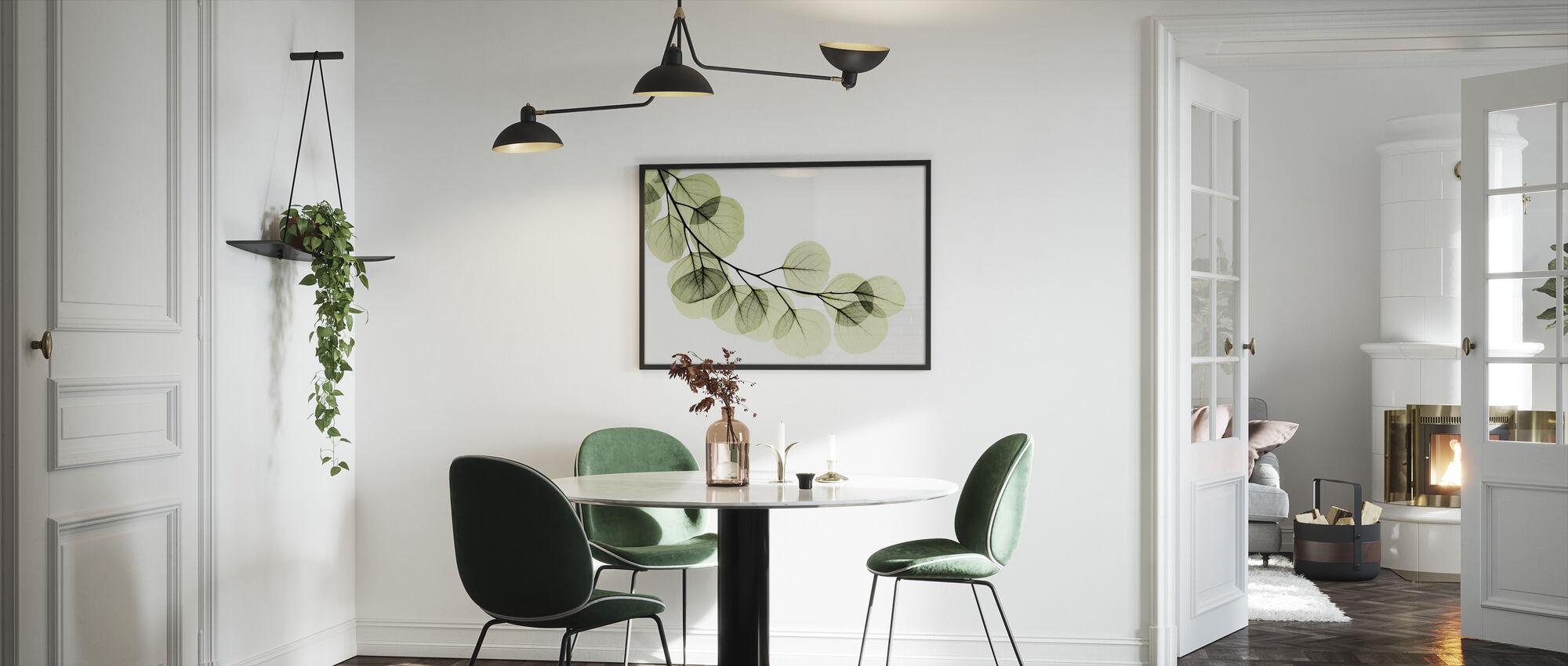 Eucalyptus - Framed print - Kitchen