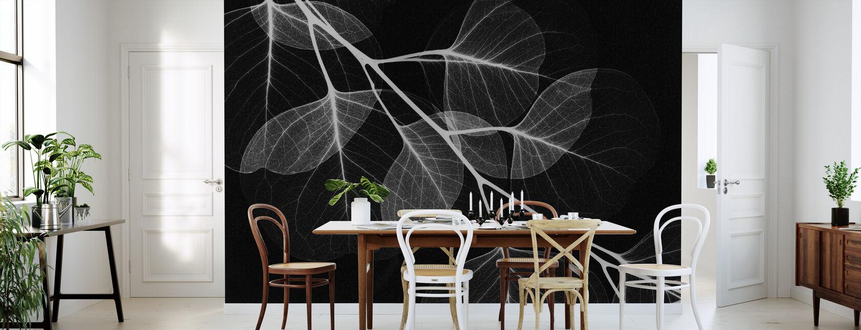 Eukalyptus Svart - Tapet - Kjøkken