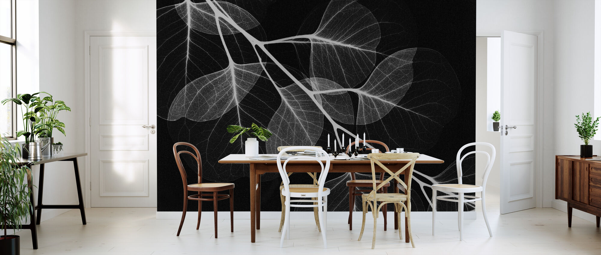 Eucalyptus Black - Wallpaper - Kitchen