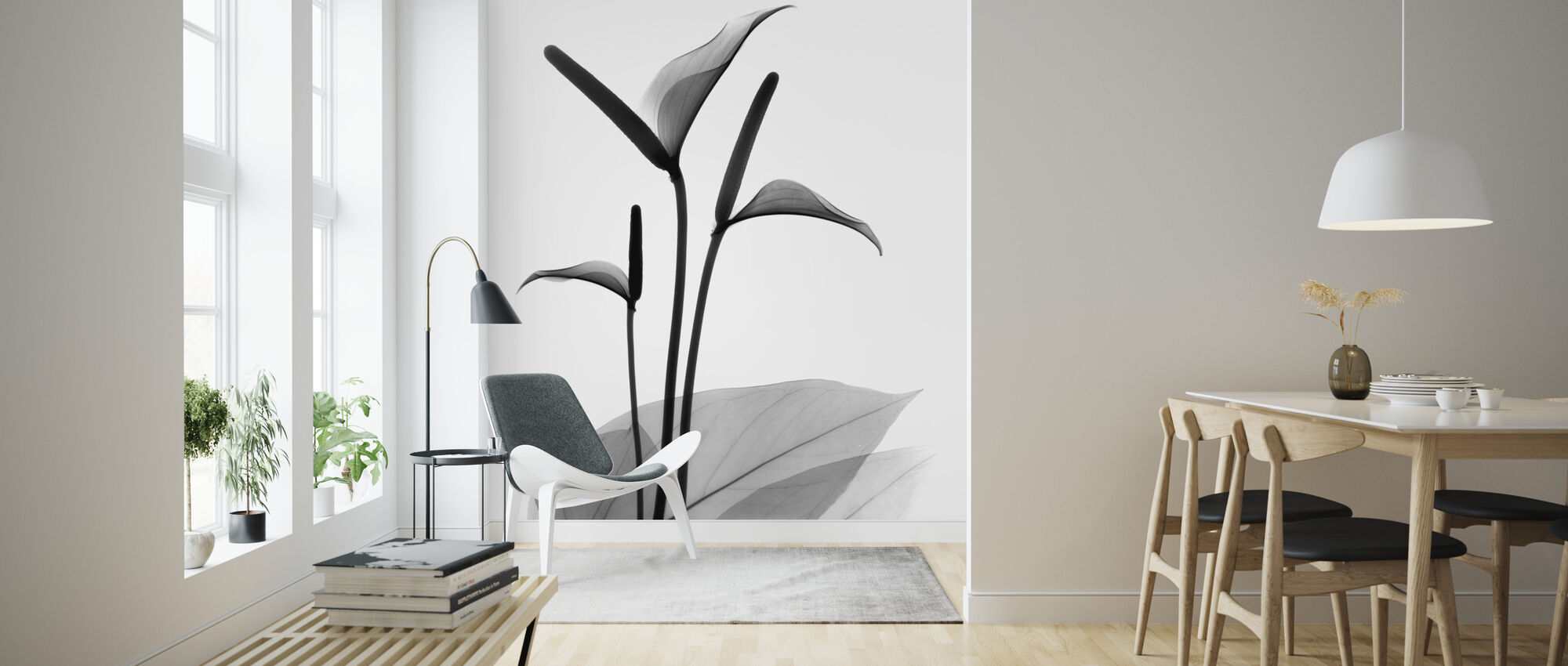 Flamingo Flower - Wallpaper - Living Room