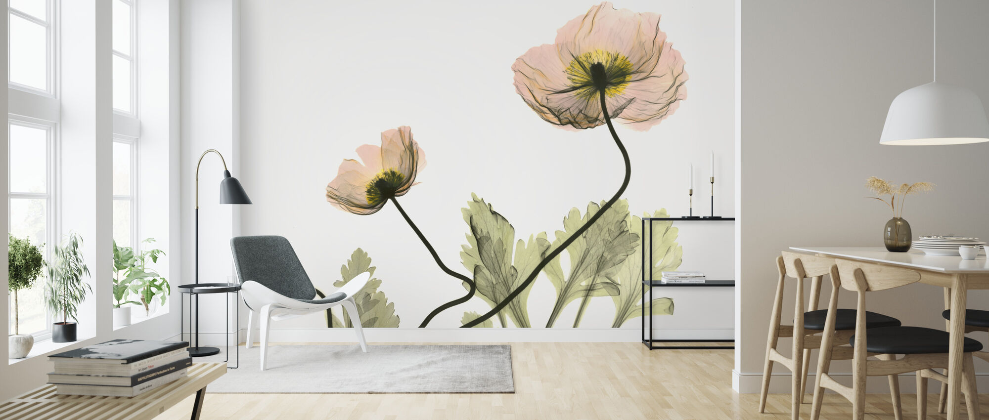 Iceland Poppy - Wallpaper - Living Room
