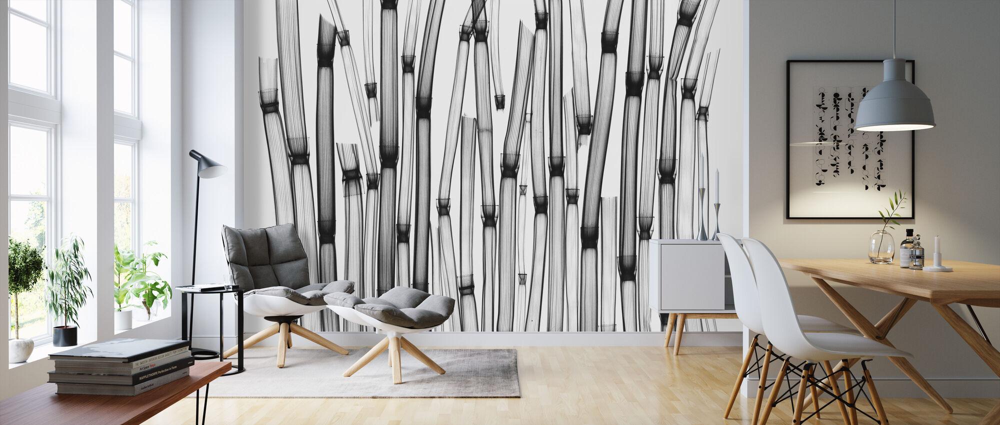 Horsetail - Wallpaper - Living Room
