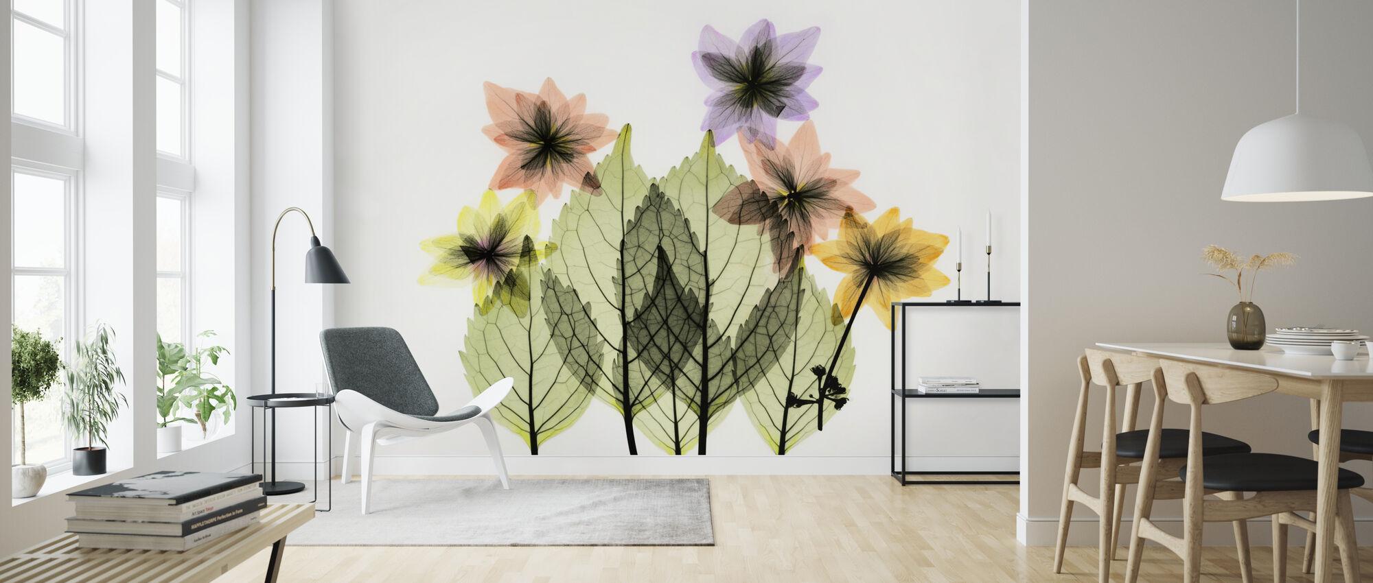Shooting Star - Wallpaper - Living Room