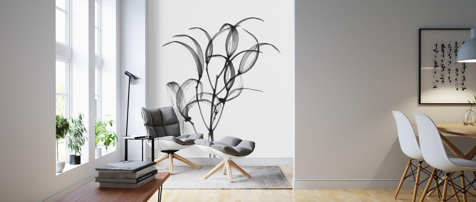 Seedpods Oleander Bush - Wallpaper - Living Room