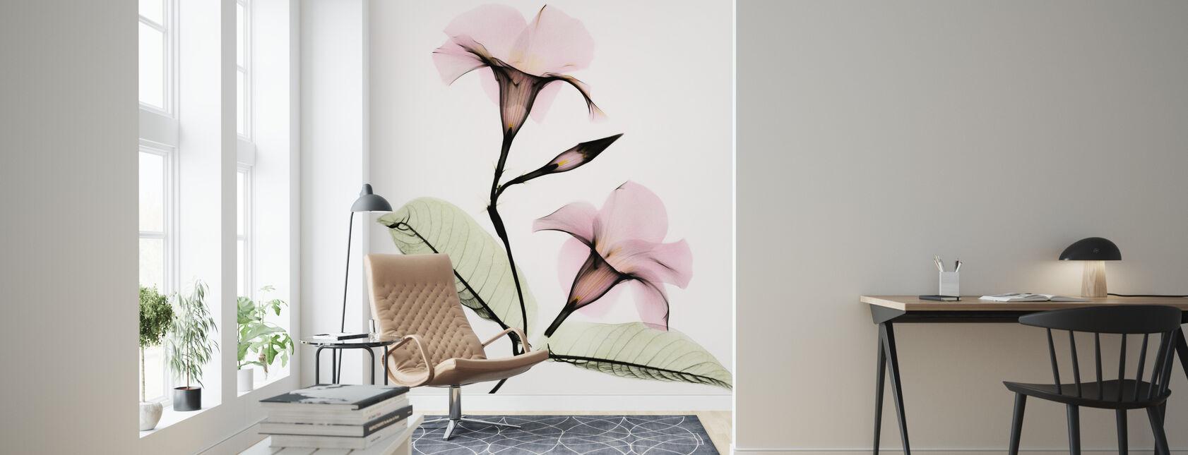 Mandevilla - Wallpaper - Living Room