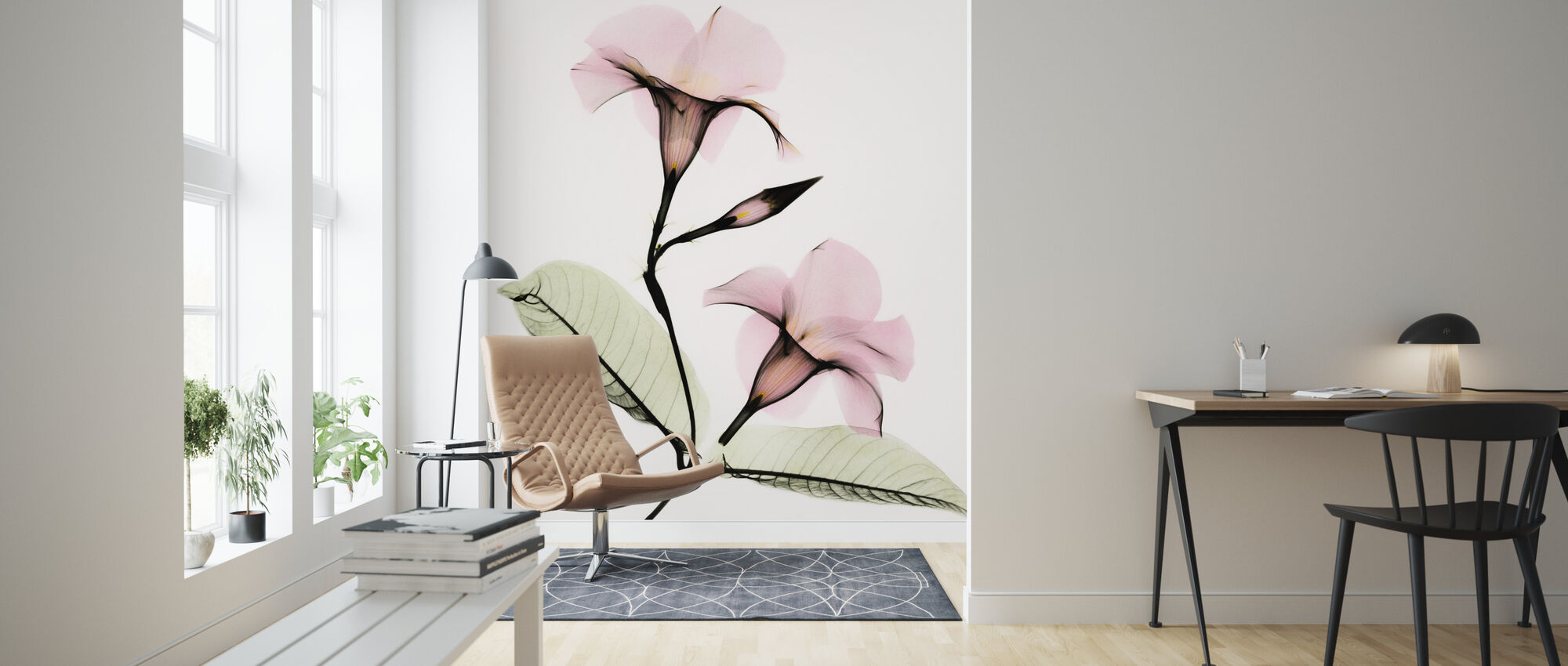 Mandevilla - Wallpaper - Living Room