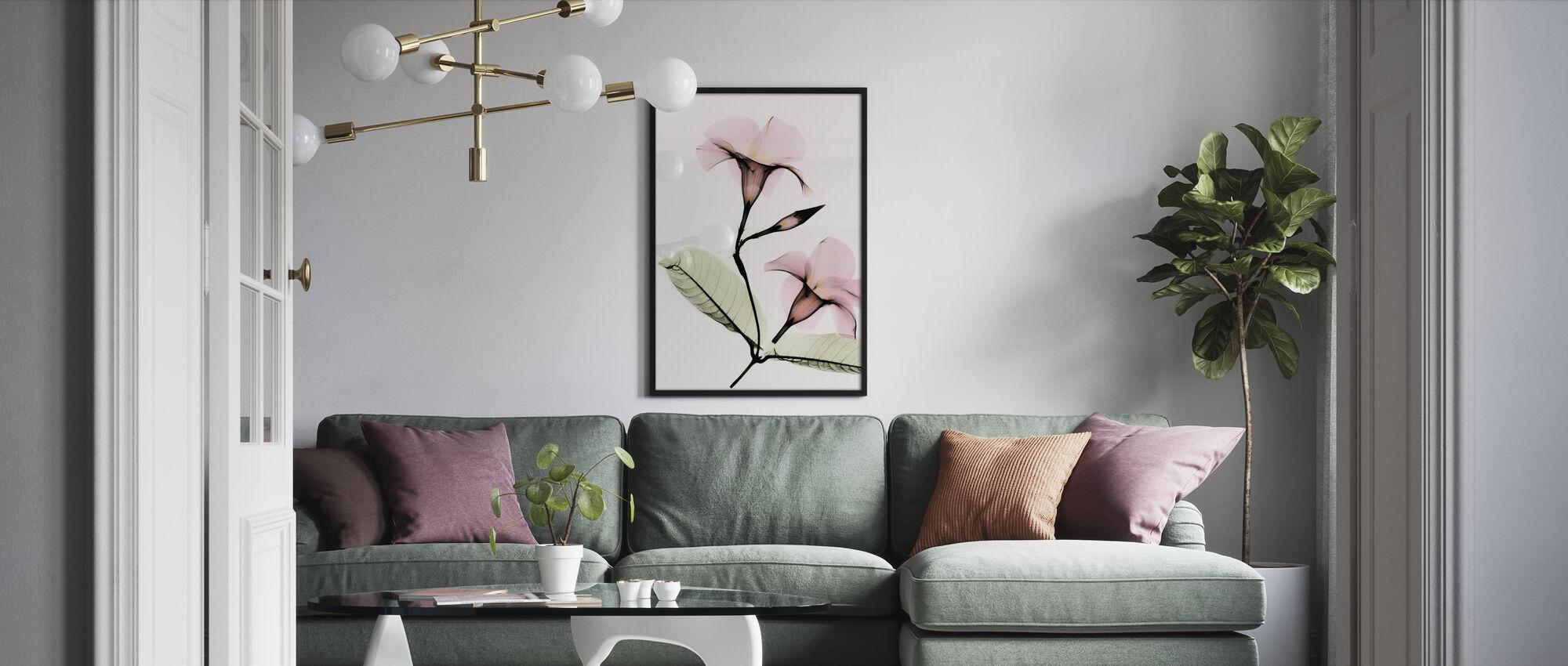 Mandevilla - Framed print - Living Room