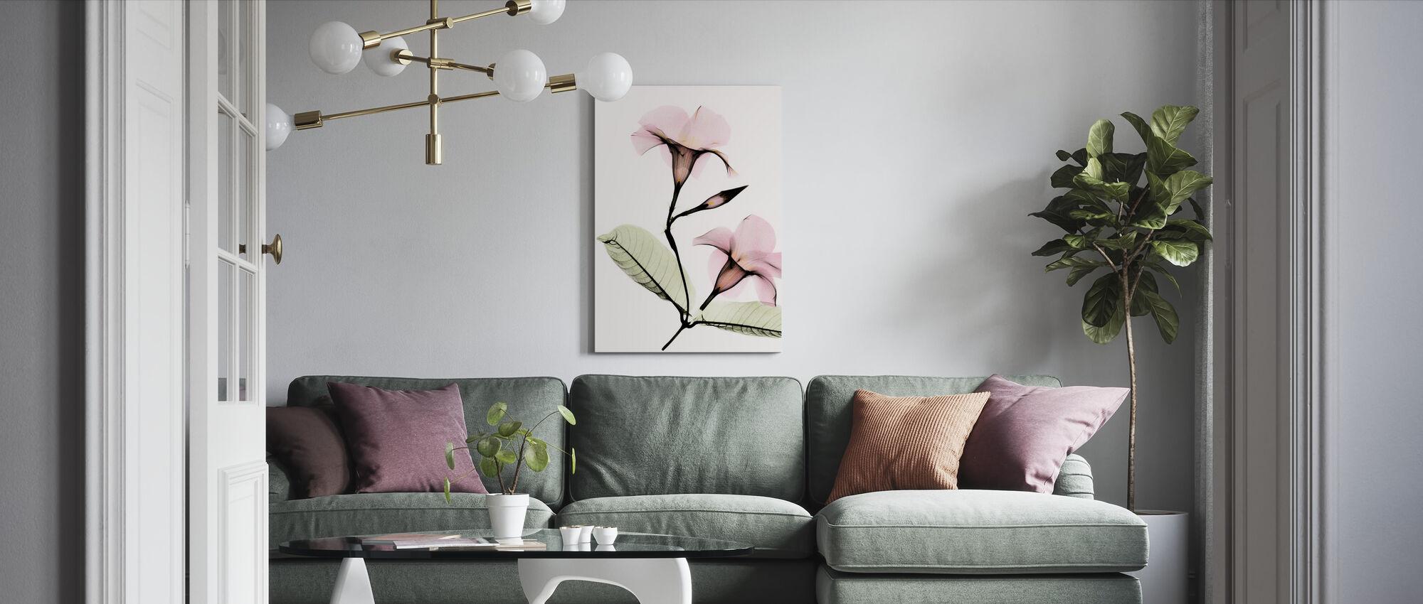 Mandevilla - Canvas print - Living Room