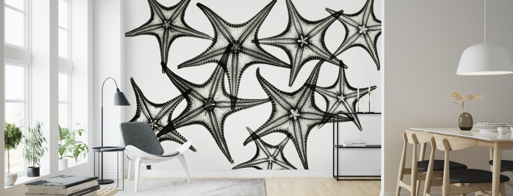 Starfish - Wallpaper - Living Room