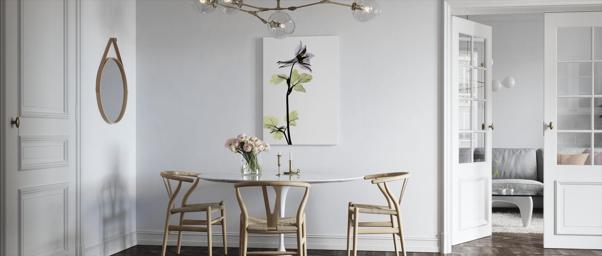 Columbine - Canvas print - Kitchen