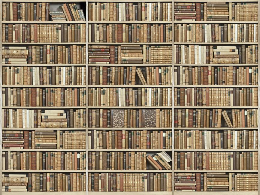 Bookshelf Wooden Beige Wall Mural Amp Photo Wallpaper