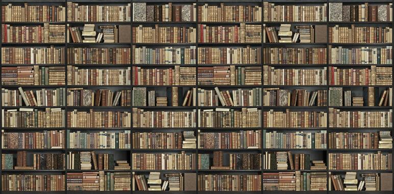 bookshelf black brown long