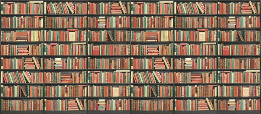 bookshelf black red green long