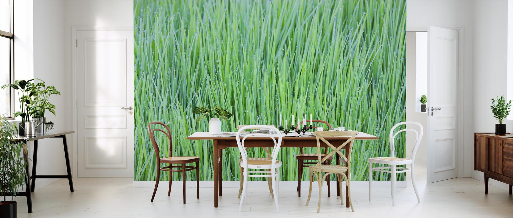 green trendige fototapete photowall. Black Bedroom Furniture Sets. Home Design Ideas