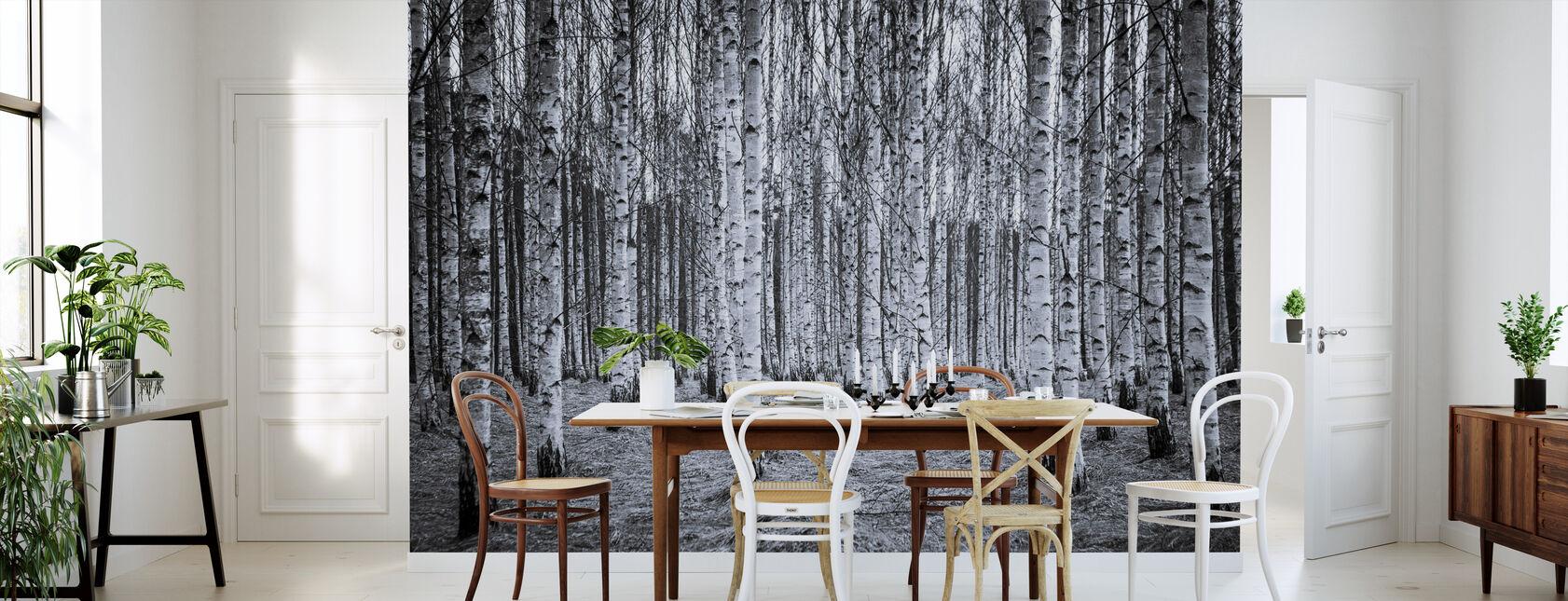 Birch Forest Black & White - Wallpaper - Kitchen
