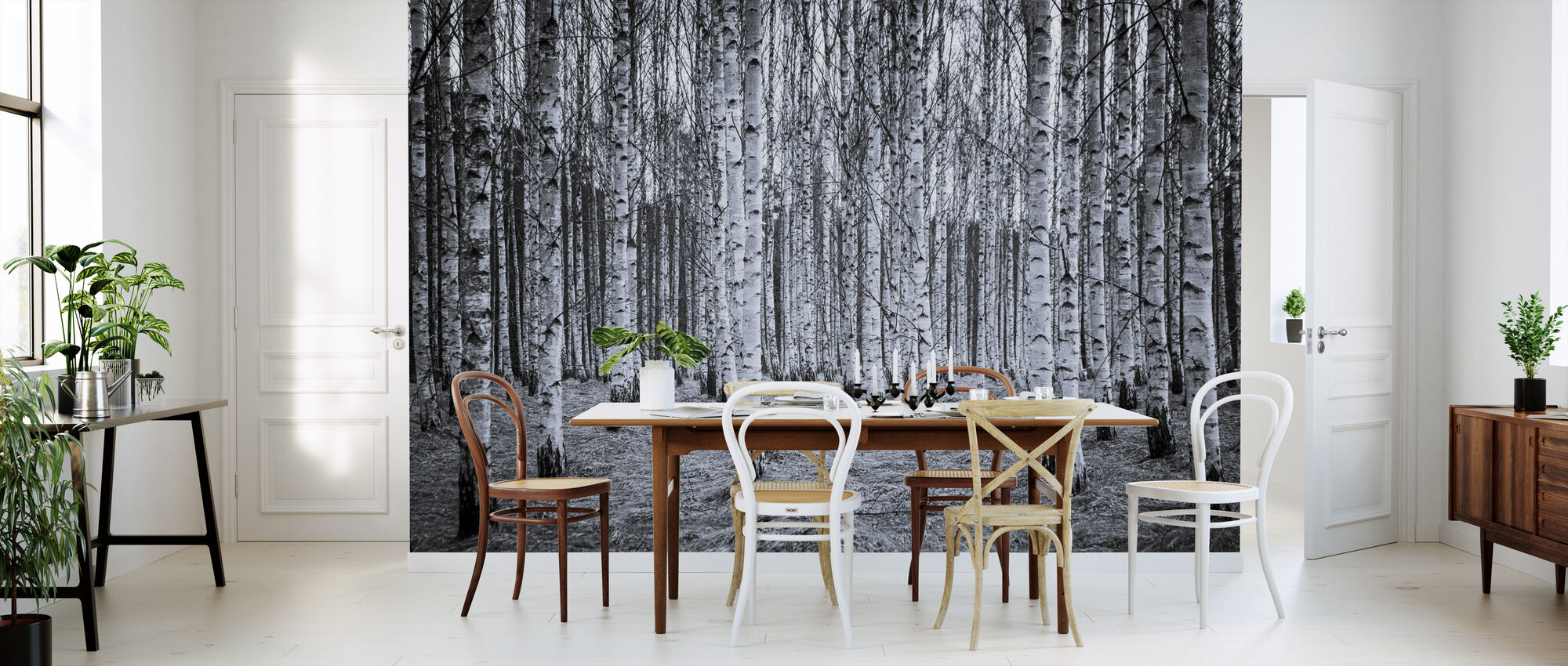 Bosque de abedul Black & White - Papel pintado - Cocina